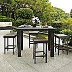 Palm Harbor Collection 5-Piece Outdoor Wicker High Dining Set