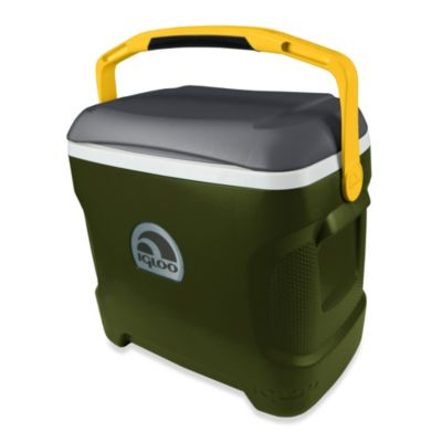 Igloo(R) Contour 30-Quart Cooler - Green/Gray/Yellow