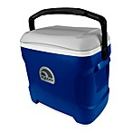 Igloo® Contour 30-Quart Cooler in Blue/Grey/Black