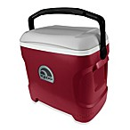 Igloo® Contour 30-Quart Cooler in Red/Grey/Black