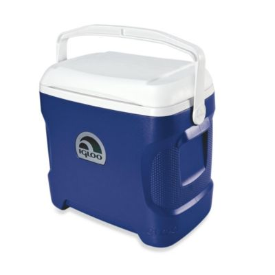 Coolers More
