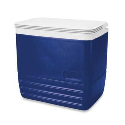 Igloo® Cooler Cool 16-Can Cooler