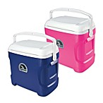 Igloo® Contour 30-Quart Coolers
