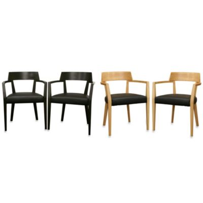 Laine Modern Dining Chair (Set of 2)