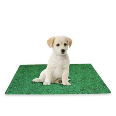 Large 28-Inch x 36-Inch Potty Pad Mate Green Grass Design
