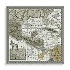 Echo Design Canvas Mexico Map in Natural