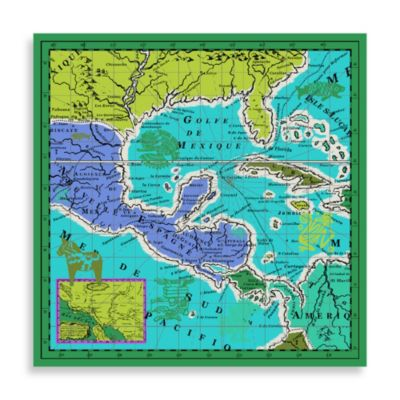 Echo Design™ Canvas Mexico Map