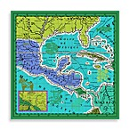 Echo Design™ Canvas Mexico Map in Aquamarine