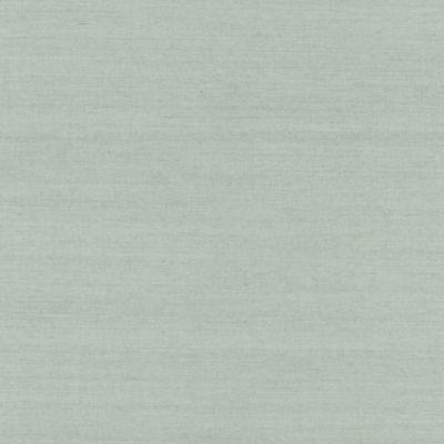 Echo Design™ Grasscloth Wallpaper Sample in Sage