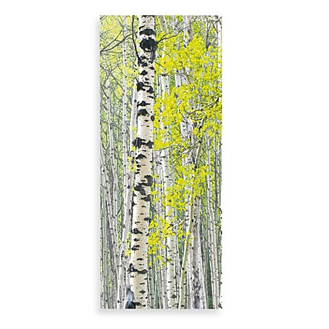 Deco Home Silver Birch Forest Transparent Decorative Room Divider
