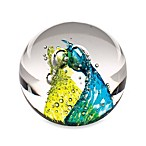Evolution by Waterford® Comsic Waters Paperweight