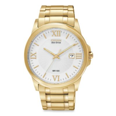 Citizen Men's Eco-Drive Stainless Gold-Tone Watch