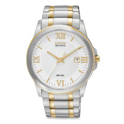 Citizen Men's Eco-Drive Stainless Two-Tone Watch
