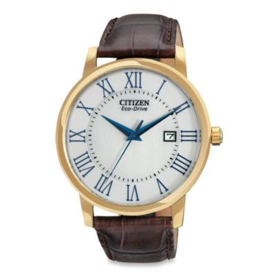 Citizen Men's Eco-Drive Stainless Brown Leather Strap Watch