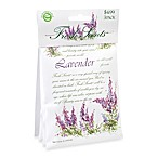 Fresh Scents™ Packet Set of 3 - Lavender