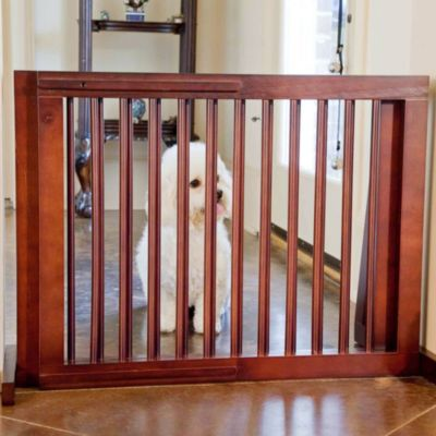 Folding Gates for Dogs