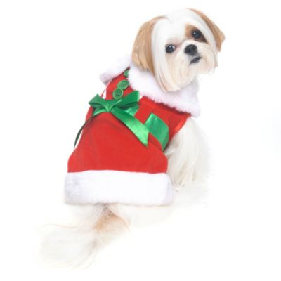 Mrs. Claus Dog Costume in Red/White