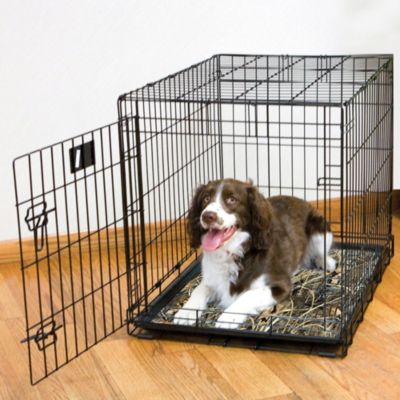 Dog Crate Cushions