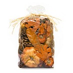 Harvest Spice Large Potpourri Bag in Orange