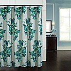 Yolanda 72-Inch x 72-Inch Shower Curtain