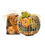 Harvest Spice Wire Pumpkin Potpourri in Orange