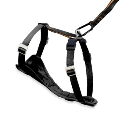 Kurgo Tru-Fit Smart Harness with Quick-Release Buckle