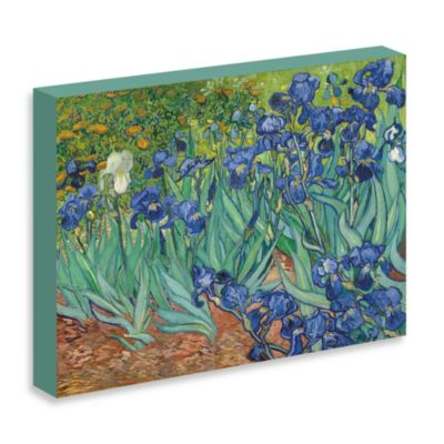 "Van Gogh ""Irises in the Garden"" Gallery Wrap Canvas Print"