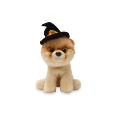 Boo, the World's Cutest Dog Plush Toy