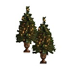 3-Foot Pre-Lit Mixed Tips Porch Tree (Set of 2)