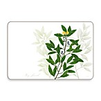 Jason Kitchen Herbs Multi-View Placemats (Set of 4)
