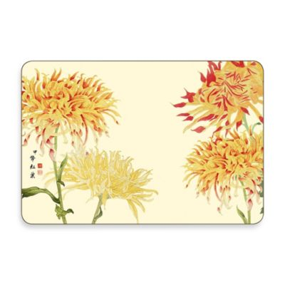 Jason Kikka Multi-View Placemats (Set of 4)