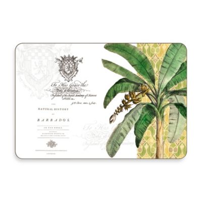 Tropical Multi-View Cork-Backed Placemats (Set of 4)