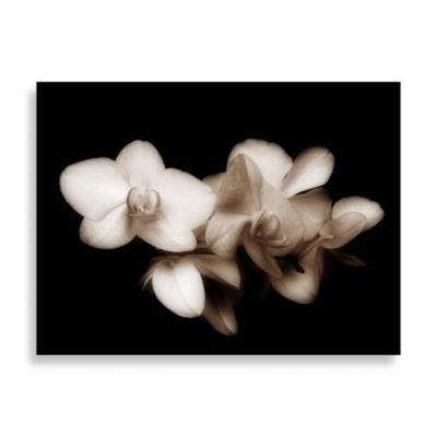 "Ilona Wellmann ""Blossoms"" Canvas Print"