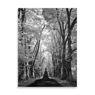 "Ilona Wellmann ""Country Road"" Canvas Print"