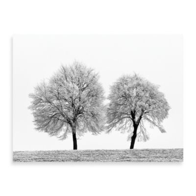 "Ilona Wellmann ""First Snow"" Canvas Print"
