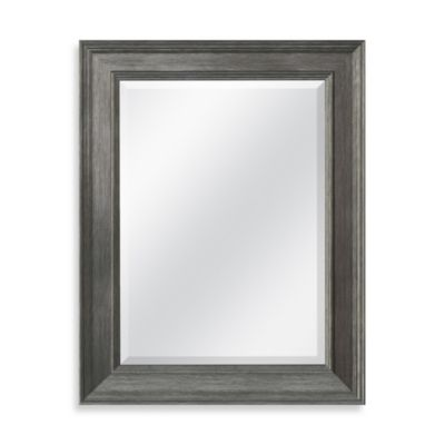 21.25-Inch x 27.5-Inch Decorative Mirror in Grey