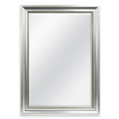 Decorative 30.25-Inch x 42.25-Inch Wall Mirror in Silver
