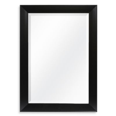 Decorative 42.25-Inch x 30.25-Inch Wall Mirror in Black