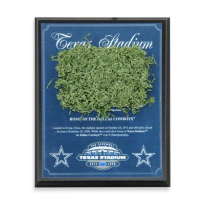 Texas Stadium Game Used Turf Plaque (1996-2008)