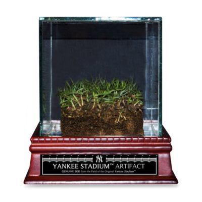 "Authentic Yankee Stadium ""Freeze-Dried Grass"" Sod with Glass Display Case"