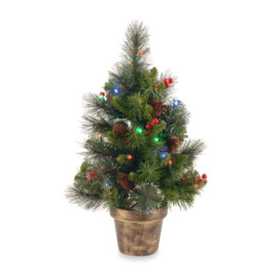 National Tree 2-Foot Crestwood Spruce Tree With Multicolor Lights