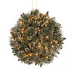 National Tree 16-Inch Glittery Bristle Pine Kissing Ball