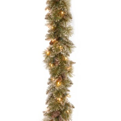 National Tree 6-Foot x 10-Inch Glittery Bristle Pine Garland