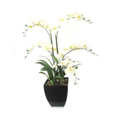 36-Inch Decorative Orchid in Pot