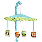 Sweet Jojo Designs Hooty Musical Mobile in Turquoise/Lime
