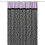 Sweet Jojo Designs 72-Inch x 72-Inch Kaylee Collection Shower Curtain