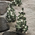 24-Inch Pathway Tree (Set of 4)
