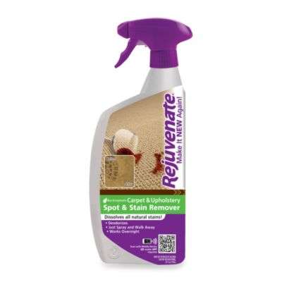 Rejuvenate® Carpet & Upholstery Spot and Stain Remover 24-Ounce Spray Bottle