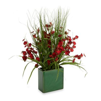 Red Dancing Orchid in Green Ceramic Planter