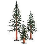 Pre-Lit 2-, 3-, and 4-Foot Trees (Set of 3)